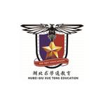 湖北求学通教育咨询有限公司