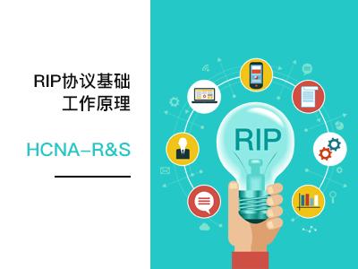 5-RIP协议基础,工作原理