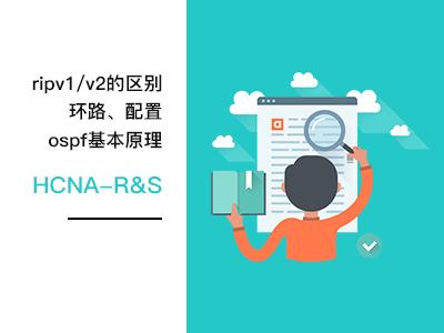 6-RIPv1与v2配置,OSPF的基本原理